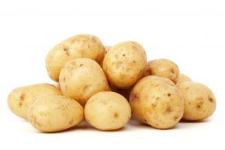 Ученые предложили новое решение для производства семенного картофеля