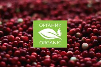 В России могут ввести цифровую маркировку органической продукции