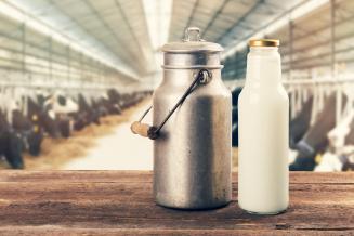 В Республике Татарстан за сутки получено 3,8тыс.т молока