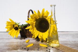 В России решено ввести пошлины на экспорт подсолнечного масла