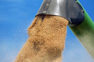 За 2020 год Смоленская область экспортировала продукцию АПК на275,2млндолл.