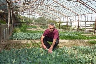За 10 лет доля продукции малых форм хозяйствования в структуре сельхозпроизводства увеличилась в два раза
