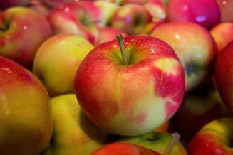 Производство яблок в России продолжит расти, считают в Плодоовощном союзе
