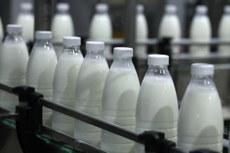Россия получила право на экспорт молока и молочной продукции в Египет