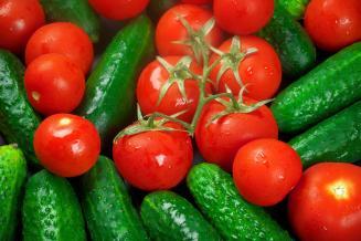 ВМосковской области получено 9,2% отобщероссийского урожая тепличных овощей