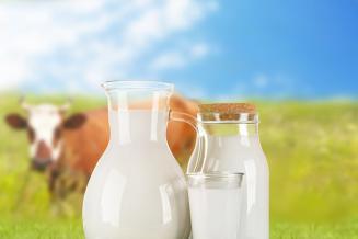 Союзмолоко обсуждает с Минсельхозом новые меры поддержки молочного сектора