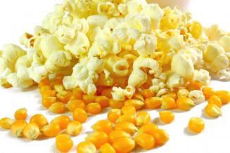 В России предложили отменить экспортные пошлины на кукурузу для попкорна