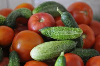 В Вологодской области снизились розничные цены на тепличные овощи