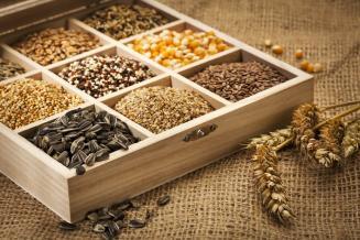 Дума приняла в первом чтении законопроект об основах семеноводства
