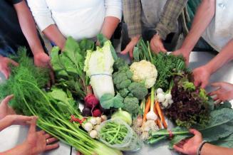 Господдержка сельхозкооперации в Самарской области увеличена в 5 раз