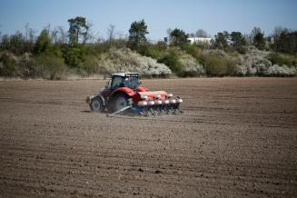 В Удмуртии план сева яровых культур выполнен более чем на 95%
