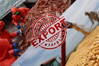Экспорт сельхозпродукции изРоссии в 2020 году превысил импорт почти на1млрддолл.США