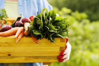 Дмитрий Авельцов расскажет о рынке фермерской продукции на форуме «Неделя ритейла»