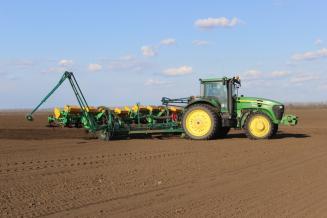 В Воронежской области план сева яровых сельхозкультур выполнен на 65%