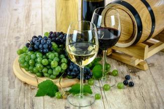 В Крыму в тестовом режиме открылся первый в России винный парк