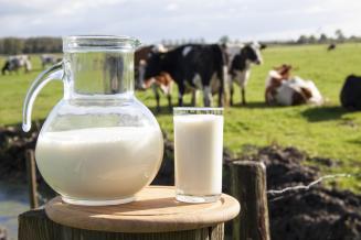Производство молока в Тамбовской области