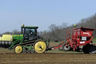 В Брянской области увеличили площадь посадки картофеля до27,6тыс.га
