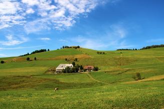 Фермеры смогут построить жилой дом на своем участке
