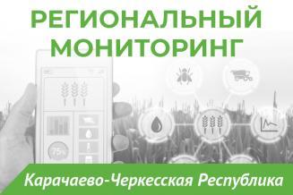 Еженедельный бюллетень о состоянии АПК Карачаево-Черкесской Республики на 25 июня