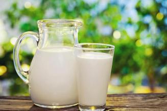 Российские сельхозорганизации увеличили реализацию молока на1,9%