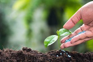 В России инвестиции в производство удобрений в2021–2022годах составят 500 млрд руб.