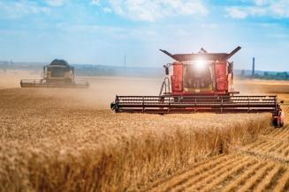 В Адыгее обмолочено 36,5 тыс. га зерновых культур