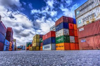 С начала года Курская область экспортировала 172,2 тыс. т продукции АПК