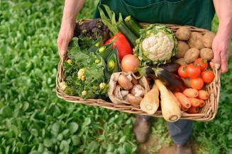 Фермерам могут разрешить торговать своей продукцией с поля