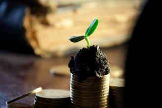 Ингушские аграрии получили 143,9 млн руб. господдержки из федерального бюджета