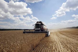 На Ставрополье идет уборка зерновых и зернобобовых культур