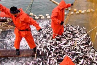 Путин утвердил закон о снижении доли иностранных инвесторов в рыбодобывающих компаниях РФ