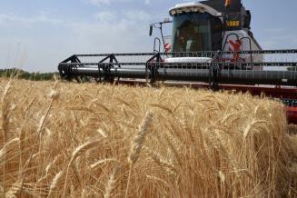 Аграрии Татарстана собрали 1,1 млн т зерна