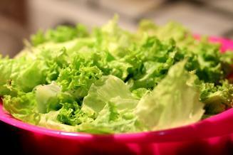Потребление салатов и трав в России к 2030 году увеличится на 25% — эксперты