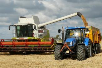 Россия уже собрала 15 млн т зерна, уборка идет в 29 регионах — глава Минсельхоза