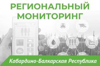 Еженедельный бюллетень о состоянии АПК  Кабардино-Балкарской Республики на 23 июля