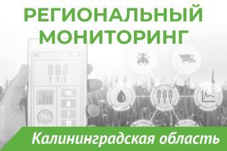 Еженедельный бюллетень о состоянии АПК Калининградской области на 01 июля