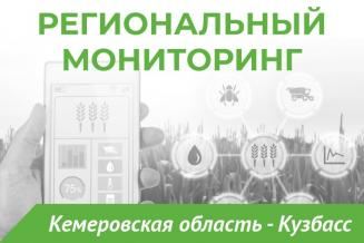 Еженедельный бюллетень о состоянии АПК Кемеровской области на 5 июля