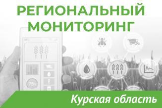 Еженедельный бюллетень о состоянии АПК Курской области на 12 июля