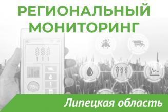 Еженедельный бюллетень о состоянии АПК Липецкой области на 20 июля