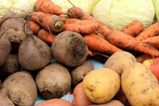 В Ярославской области с 2021 года стимулируют производство овощей открытого грунта