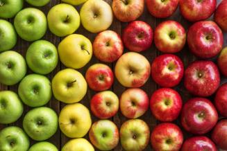 В России ожидается хороший урожай яблок