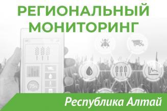 Еженедельный бюллетень о состоянии АПК Республики Алтай на 25 июля