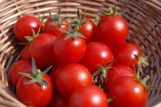 В Новгородской области за неделю помидоры подешевели на 2,5%
