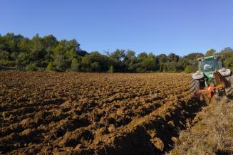 Более 1 млн га пашни введено в сельхозоборот в России в 2020 году