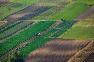 В России планируют выстроить комплексную работу по борьбе с опустыниванием сельхозземель