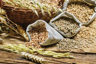 ФАО повысила оценку запасов зерновых в мире