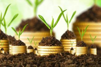 Сельхозтоваропроизводители Калмыкии получили 454,62млнруб. изфедерального бюджета