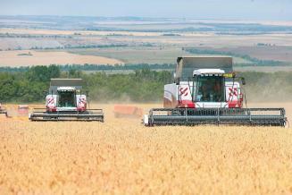 Самарскими аграриями убрано более 90% площади под зерновые культуры