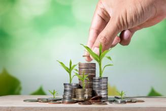 В 2021 году в АПК Саратовской области направят около 12 млрд руб. инвестиций в основной капитал