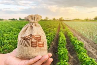 Кредитование сезонных полевых работ в РФ выросло более чем на 27%